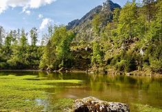 "Wiesensee im Salzkammergut: Der mysteriöse Alpensee ist wieder ""aktiv"" (Video) Seen, Golf Courses, Aktiv, Mountains, Videos, Nature, Travel, Lifestyle, Snow Melt"