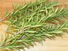 "Rosemary stimulates the central nervous system and circulation making it beneficial for low blood pressure and sluggishness. Rosemary oil and rosemary essential oil are used to alleviate the pain of sprains, arthritis, sciatica and neuralgia. Rosemary has also been used traditionally to ease asthma. ""The essential oils in rosemary leaf can block histamine, the chemical culprit of both asthma and allergies."