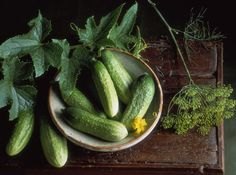 Everything You Wanted To Know About Growing Crisp Cucumbers Learn how to get cool, juicy veggies without the bitterness.