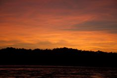 Getting up early to record bird species at the clay lick comes with a pretty special reward - an Amazon sunrise!