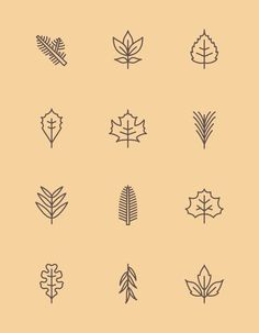 New York Leaf Pictograms by James McDonough, via Behance