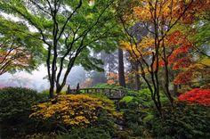 "Piclogy on Twitter: ""Bridge In Japanese Garden, Portland | Photography by ©Roman Johnston https://t.co/obilaqSrau"""