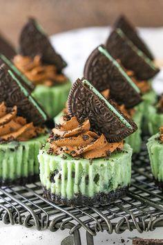 Chocolate Oreo Cheesecake Recipe, Easy Mini Cheesecake Recipe, Oreo Cheesecake Recipes, Chocolate Recipes, Oreo Brownies, Oreo Cake, Raspberry Cheesecake, Pumpkin Cheesecake, Finger Desserts