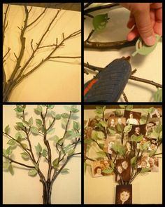 3-D framed family tree - love the idea of real twigs