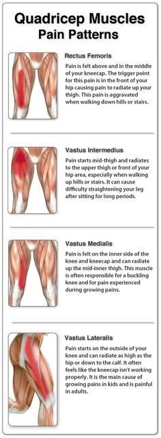 Thigh muscle pain symptoms can be mild to extreme based on the level of your injury. A sharp pain or pulling may be felt in the area of the pull, strain or tear. This can radiate along the length of your muscle up to your hip and pelvis, and/o Psoas Muscle, Muscle Up, Muscle Pain, Psoas Iliaque, K Tape, Medical Student, Psoas Release, Thigh Muscles, Quad Muscles