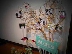 ウェディングツリー♡ |SODOH&チュールドレス大好きなSaeの結婚式ブログ|Ameba (アメーバ)