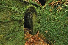 St Guidel's Holy Well, Menacuddle, near St Austell:  This is a truly magical site, sitting as it does at the foot of a grove of ancient trees and rhododendron bushes, beside a waterfall and river which runs white with the powder from the china clay industry which once so dominated this area.  The beautiful Gothic well chapel is now completely clothed in ivy and lichen, giving it the impression of emerging naturally from, or perhaps slowly returning to, the earth.