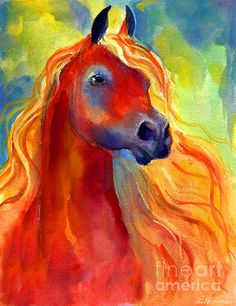 """Arabian Horse 5"" by Svetlana Novikova"