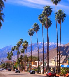 Shop and play in sunny downtown Palm Springs