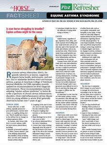 Free Factsheet Botulism In Horses  ThehorseCom  Botulism Is An