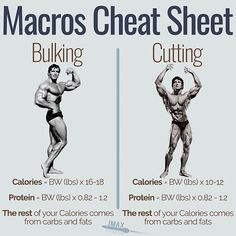 MACROS CHEAT SHEET FOR BULKING AND CUTTING - You want to bulk or you want to cut? Here are the macros you need to be eating. - The truth is the process is very similar. Get a minimum protein of so if you're that's of protein per day. Fitness Workouts, Gym Workout Tips, Weight Training Workouts, At Home Workouts, Fitness Motivation, Biceps Workout, Training Tips, Muscle Fitness, Gain Muscle
