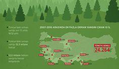 Türkiye'de son 10 yılda 24 bin 264 orman yangını çıktı | Gündem haberleri