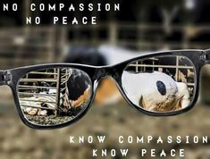 ✌ #vegan know compassion know peace