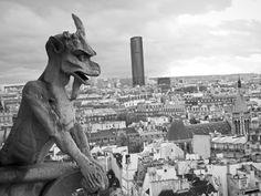 Une gargouille de Notre Dame bien connue. (Paris) Paris, Dame, Moose Art, Animals, Animaux, Animal, Animales, Animais