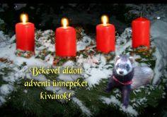 """Képtalálat a következőre: """"Áldott Advent 3. vasárnapot - szép képek"""" Pillar Candles, Advent, Christmas, Xmas, Navidad, Noel, Natal, Candles, Kerst"""