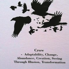 Crow – adaptability, Change, Abundance, Creation, Seeing Through Illusion, Transformation