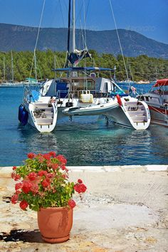 Catamaran Boat Stock Photo by Summer Vacations, Dinghy, Catamaran, Wander, Trips, Boat, Stock Photos, Pretty, Greece