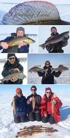 Fishing in Lapland, Finland /  grayling_land_pilkki.jpg