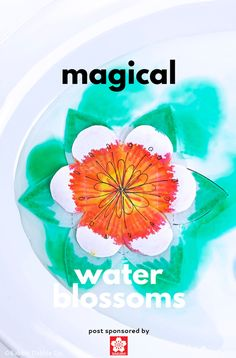 This artful paper flower for kids to make is magical….and scientific! Explore absorption, diffusion and kirigami in this STEAM project. Clay Crafts For Kids, Clay Pot Crafts, Spring Crafts For Kids, Children Crafts, Preschool Crafts, Easy Art Projects, Stem Projects, Projects For Kids, Creative Activities For Kids