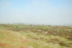 Wangerooge - the fog part 2