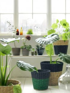 kea-nipprig-woven-furniture-planter-baskets-gardenista.