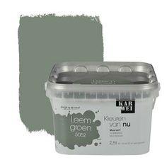 KARWEI-kleuren van Nu Wandfarbe matt tongrün l - . Wall Colors, House Colors, Room Inspiration, Interior Inspiration, Decoration Entree, Colour Board, Kidsroom, Interior Design Living Room, Colorful Interiors