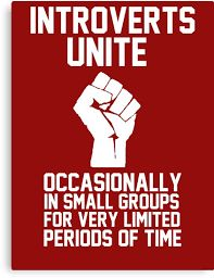 Image result for introverts unite!