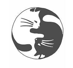 cat wallpaper tumblr - Google Search