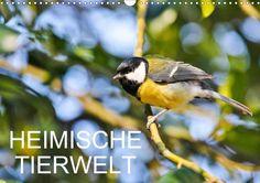 Heimische Tierwelt - CALVENDO Kalender - #kalender #fotografie #calvendo #natur