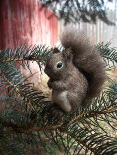 Lisa-Schmidt Felted Squirrel