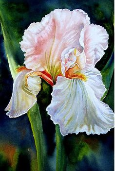 Iris Iris Painting, Watercolour Painting, Watercolor Flowers, Painting & Drawing, Watercolors, Iris Flowers, Exotic Flowers, Iris Art, Vintage Diy