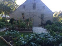 Colonial herb garden at oldest house in Edgartown
