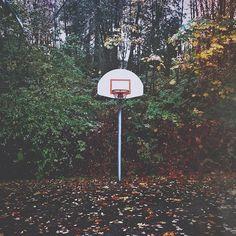 What a west coast basketball court looks like. West Coast, Basketball Court, Landscape, Landscaping