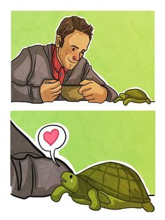 Sherlock and Clyde the Tortoise//This was probably my favorite episode in Elementary's first series. *squee* Clyde!