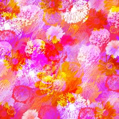 Magenta Flowers Scarf and Print