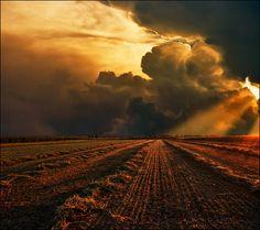 Resultado de imagem para field sunset