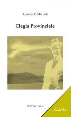 Elegia Provinciale, romanzo di Giancarlo Micheli.  L'immagine in copertina è stata realizzata dall'autore.