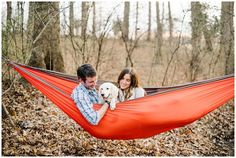 Hippie Couple, Dog Hammock, Distillery, Engagements, Photography Poses, Engagement Photos, Dogs And Puppies, Dream Wedding, Parents