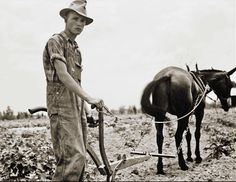 Young farmer, 1937
