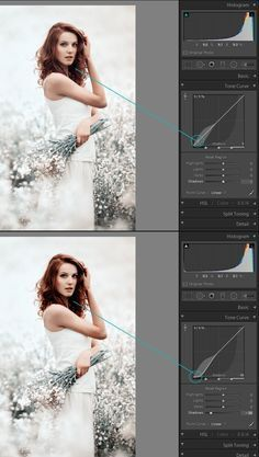 An Overview of the Tone Curve Panel in Lightroom: Part I