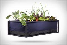 AGRICULTURA URBANA - NOOCITY GROWBED  Agricultura urbana é a capacidade de fazer o seu próprio alimento com espaço limitado e recursos criativos.  Veja mais detalhes: http://www.filtromag.com.br/agricultura-urbana-noocity-growbed/