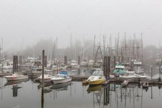 Ucluelet Vancouver Island Canada August 2018 Fishing Boats Marina Smoky - , #AFFILIATE, #Canada, #August, #Island, #Ucluelet #AD Boat Marina, Morning Sunrise, Vector Hand, Vancouver Island, Fishing Boats, Editorial Photography, Hand Drawn, Canada, Stock Photos