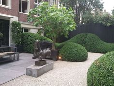 prachtig mooie combi tegels split terras en wolken Boxwood Hedge, Modern Garden Design, Rooftop Pool, Backyard, Patio, House Front, Topiary, Hedges, Landscape Architecture