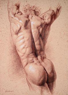 Sepia Torso, Pencil on sepia toned paper, by  Victor Gadino