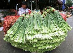 ...woman selling fresh garlic stems in Korean market
