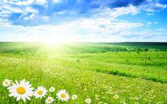 Download Spring Wallpaper Wide #pcj ~ Petakilan.com