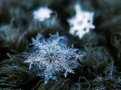 Photographer Tapes a $50 Lens To His P&S Camera To Take Stunning Macro Snowflake Photos