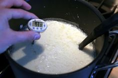 The Best Party Trick Ever: How to Make Thirty Minute Mozzarella