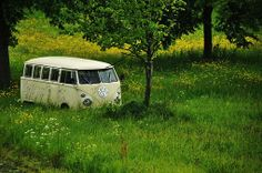 vw combi waiting to be rescued