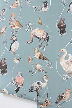 Flights Of Fancy Wallpaper - frame a sheet of wallpaper Bird Wallpaper, Unique Wallpaper, Home Wallpaper, Eclectic Wallpaper, Animal Wallpaper, Nursery Wallpaper Uk, Crazy Wallpaper, Interior Wallpaper, Feature Wallpaper
